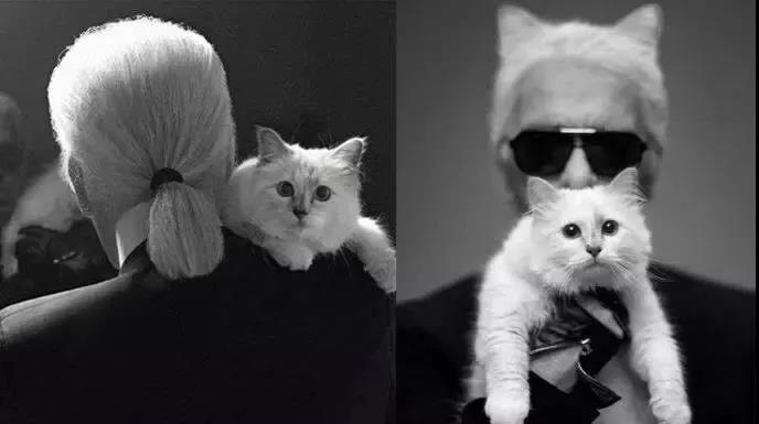 Karl Lagerfeld and his cat